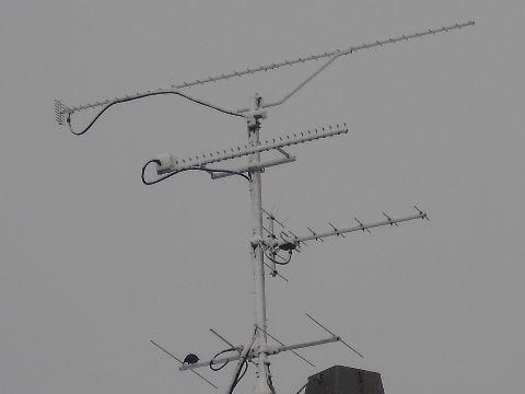 pa7ml-antenne